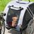 bike transport for dogs stock photo © ivonnewierink