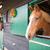 fából · készült · ajtó · istálló · kép · Alpok · ház - stock fotó © ivonnewierink