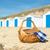 Blauw · witte · strand · nederlands · hout · oceaan - stockfoto © ivonnewierink