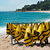 duiken · strand · Geel · rack · sport · zomer - stockfoto © ivonnewierink