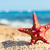 starfish · plage · été · temps · ciel · mer - photo stock © ivonnewierink