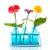 kleurrijk · bloemen · flessen · weinig · Rood · Blauw - stockfoto © ivonnewierink