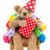 speelgoed · beer · verjaardag · hoed · geïsoleerd · witte - stockfoto © ivonnewierink