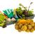 растительное · саду · капуста · растений · зеленый · растущий - Сток-фото © ivonnewierink