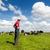 vacas · holandés · paisaje · Holanda · vaca · verde - foto stock © ivonnewierink