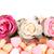 naturaleza · muerta · rosa · rosas · cesta · flores - foto stock © ivonnewierink