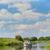 ручей · голландский · природы · резерв · воды · берега - Сток-фото © ivonnewierink