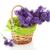 cesta · lavanda · buquê · roxo · flores - foto stock © ivonnewierink