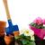 inny · narzędzia · roślin · wiosną · ogród · trawy - zdjęcia stock © ivonnewierink