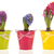 Colorful Hyacinths stock photo © ivonnewierink