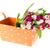 bouquet · coloré · fleurs · canne · panier · blanche - photo stock © ivonnewierink