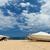 Motor · лодках · порт · пирс · морем · лодка - Сток-фото © ivonnewierink