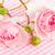 розовый · роз · капли · воды · воды · любви - Сток-фото © ivonnewierink