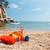 handdoek · plastic · speelgoed · vakantie - stockfoto © ivonnewierink