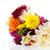 dahlia · bloemen · boeket · vers · gemengd · hemel - stockfoto © ivonnewierink