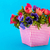 bouquet anemones on blue background stock photo © ivonnewierink