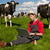 jonge · landbouwer · laptop · veld · koeien · werken - stockfoto © ivonnewierink