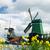 dutch windmill stock photo © ivonnewierink