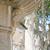 венецианский · лев · фонтан · квадратный · воды · каменные - Сток-фото © ivonnewierink