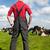 typisch · nederlands · landschap · landbouwer · koeien · zwart · wit - stockfoto © ivonnewierink