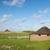 ahır · yeşil · alanları · gökyüzü · ağaç · gıda - stok fotoğraf © ivonnewierink