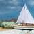 speelgoed · zeil · boot · houten · speelgoed · strand · water - stockfoto © ivonnewierink