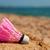ピンク · 羽毛 - ストックフォト © ivonnewierink