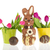 chocolate easter hare stock photo © ivonnewierink