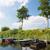 barcos · rio · dois · pescaria · grama · barco - foto stock © ivonnewierink