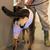 犬 · 獣医 · 獣医 · 手 · 病院 · 薬 - ストックフォト © ivonnewierink