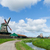 holandés · frescos · tulipanes · brillante · primavera - foto stock © ivonnewierink