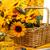 romántica · naturaleza · muerta · girasoles · cesta · blanco · silla - foto stock © ivonnewierink
