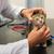 veterinario · examinar · gato · propietarios · armas · cuidado · de · las · mascotas - foto stock © ivonnewierink