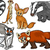 wild animals set cartoon illustration stock photo © izakowski