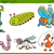 cartoon insect characters set stock photo © izakowski
