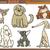 собаки · Cartoon · иллюстрация · набор · комического - Сток-фото © izakowski