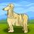 cartoon afghan hound dog stock photo © izakowski