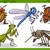happy insects set cartoon illustration stock photo © izakowski