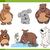 bears animal characters set stock photo © izakowski