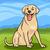 labrador retriever dog cartoon illustration stock photo © izakowski