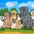 бородатый · собака · Cartoon · иллюстрация · смешные · чистокровных · собак - Сток-фото © izakowski