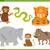 animal characters collection stock photo © izakowski