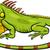 cartoon · groene · leguaan · dier · karakter · illustratie - stockfoto © izakowski