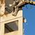 sloop · huis · stad · werk · stedelijke - stockfoto © jakatics