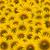 beautifu Sunflower closeup stock photo © jakgree_inkliang