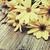 yellow flowers   vintage look stock photo © jamdesign