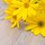 yellow flowers stock photo © jamdesign