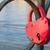 fechado · coração · chave · vermelho · buraco · de · fechadura · dourado - foto stock © jamdesign