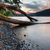 ağaç · büyüyen · göl · gün · batımı · kıyı · gökyüzü - stok fotoğraf © jameswheeler
