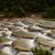 halcón · nieve · montana · dragón · cielo - foto stock © jameswheeler